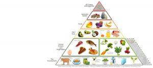 Natural Nutrition and Osteopathy by Osteoactive